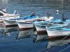 Flota en puerto. Puerto de Muros.