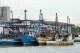 Flota Brasil