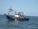 Pesca cerco mediterráneo