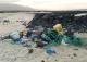 Residuos marinos
