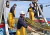 Redes pesca