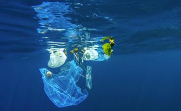 Bolsas plástico océano