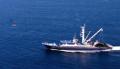 Atunero Pacífico