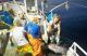 Captura de un atún aleta amarilla