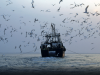 Flota china en aguas de Ghana
