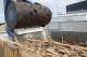 Reciclaje madera proyecto 3RFish