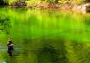 Pesca fluvial